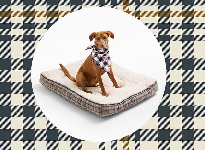 Boots & Barkley Gusset Bed in Blue/Cream Plaid